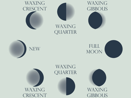 waxing: Moon phases. The whole cycle from new moon to full. Vector illustration.