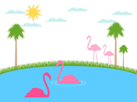 sun beach: Flamingo floats. Landscape with flamingos, wildlife refuge. Vector.
