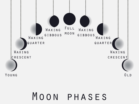 lunar phases: The phases of the moon. Lunar phase. Moon stages. Vector illustration.