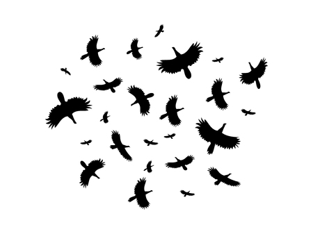 squawk: A flock of birds flying in a circle on a white background. Vector illustration.