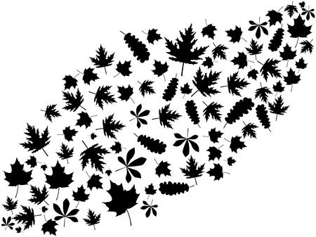 Flying autumn leaves black on white background. Vector illustration