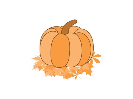autumn background: Pumpkin on leaves isolated on white background. Hand-drawn pumpkin, cartoon. Vector illustration