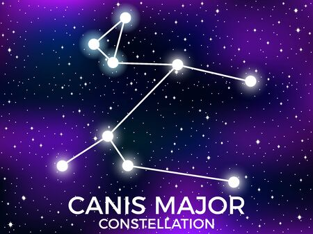 Canis Major constellation. Starry night sky. Cluster of stars and galaxies. Deep space. Vector illustration