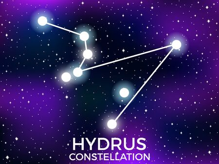 Hydrus constellation. Starry night sky. Zodiac sign. Cluster of stars and galaxies. Deep space. Vector illustration