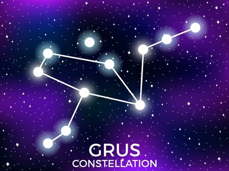 Grus constellation. Starry night sky. Cluster of stars and galaxies. Deep space. Vector illustration