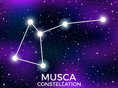 Musca constellation. Starry night sky. Cluster of stars and galaxies. Deep space. Vector illustration