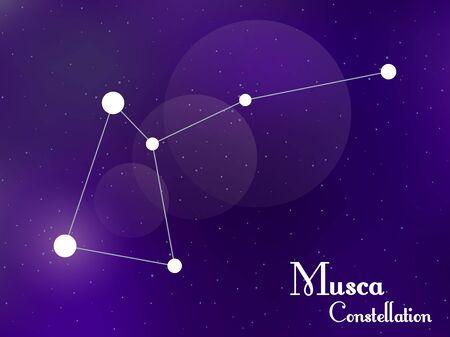 Musca constellation. Starry night sky. Cluster of stars, galaxy. Deep space. Vector illustration Illustration