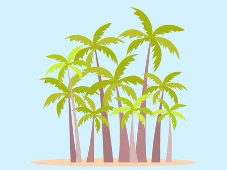 Palm grove. Tropical palm trees in flat style. Typography background for advertising, postcards, poster and banner. Vector illustration