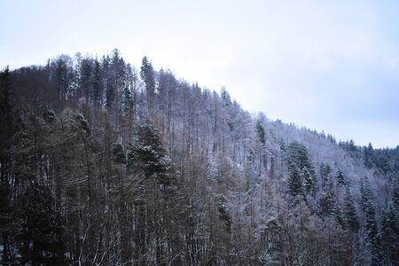 View of mountain landscape from inside Brans castle in Bran