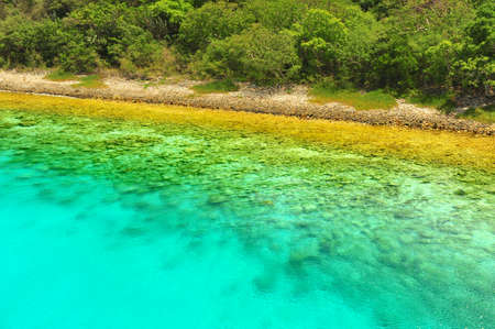 Tropical waters in sahllow bay with coral