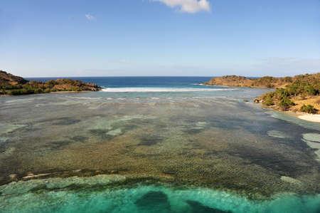 willy: Fishing Flats and reef, Jost Van Dyke, BVI