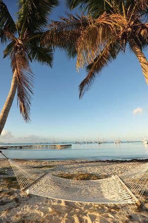Tropical hamock beach scene