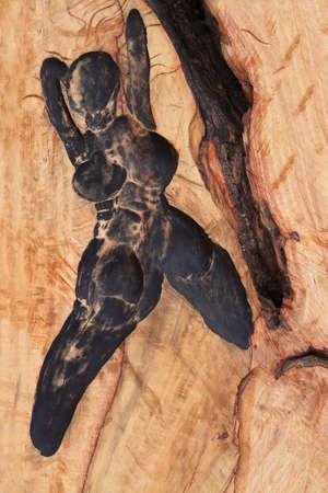 woman shadow: woman shadow on wood surface