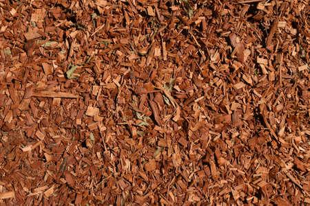 Eucalyptus mulch texture background