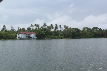 lakeview: A view from House boat in GODs own state Kerala
