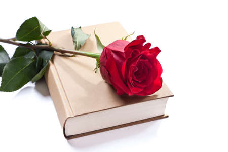 a book and a rose photo
