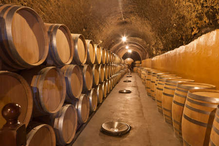 cask: barrels of wine in an old winery in Ribera del Duero, Valladolid  Editorial