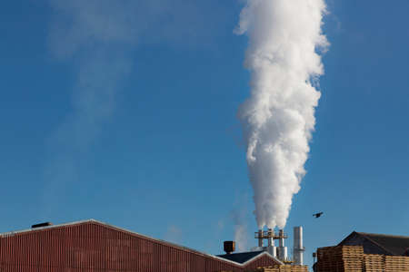 fleeing: bird fleeing from industrial pollution from a factory and its fumes