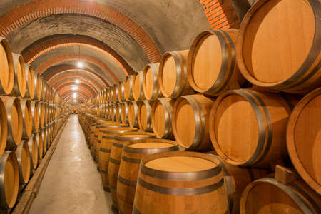Barrels of wine in an old winery in Ribera del Duero, Valladolid