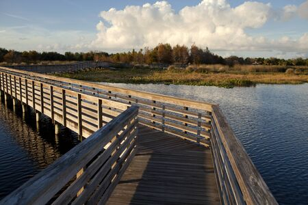 Wooden walkway over lake and wetlands  photo