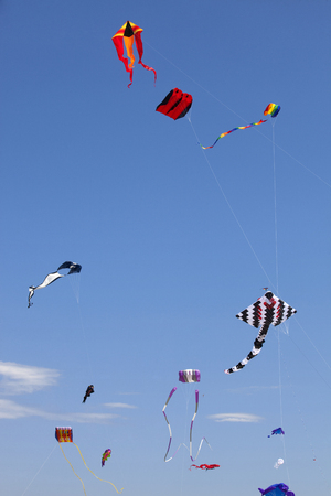 wildwood: Variety of colorful Kites in a clear blue sky