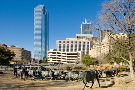 Dallas Texas daytime