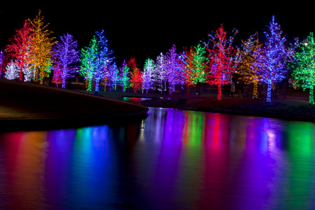 Trees tightly wrapped in LED lights for the Christmas holidays reflecting in lake. Each tree is wrapped in one color.