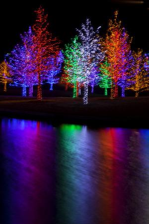 木はしっかりと湖に反映したクリスマス休日のため LED ライトに包まれて。各ツリーは 1 つの色に包まれました。