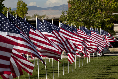 clear day: Thousands of flags in a Patriotic display