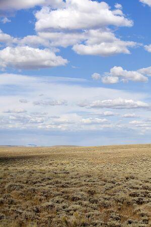 plains: Open Plains
