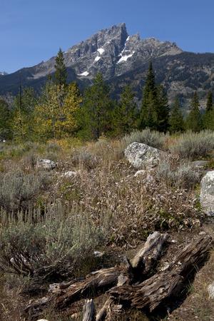 teton: Beautiful morning view of the Grand Teton Mountains in the Grand Teton National Park, Wyoming. Stock Photo