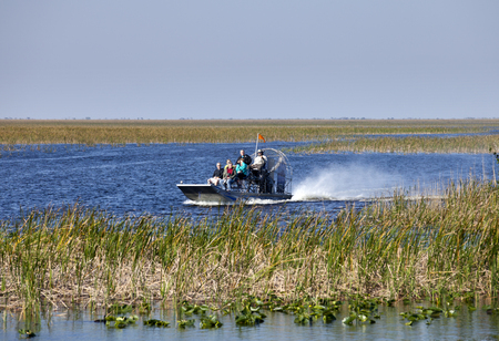 sawgrass: Tourist enjoying and airboat ecotour of the Sawgrass Recreation Park in the Everglades . Sawgrass airboat tours are one of south Floridas top destinations activities for visitors to the state.