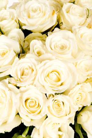 Closeup of Wedding bouquet of White Rose