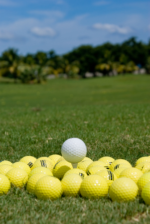 standing out in the crowd: Golf Ball - Standing out in a crowd