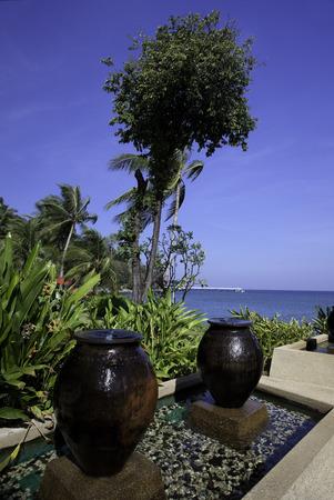 Zen tropical garden