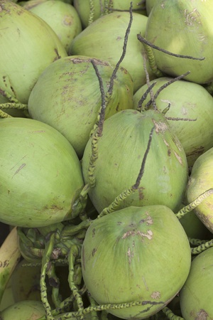 phuket province: The heap of coconut for sales from Phuket Province, Thailand.