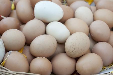 sacrificio: Huevos en la cesta, los tailandeses utilizan para el sacrificio.