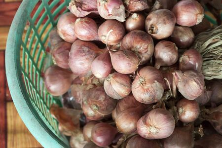 aisa: Shallot use for cooking and herb.