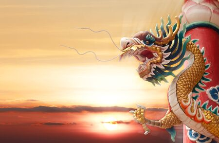 Chinese golden dragon with column and sunset background photo