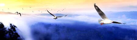 natural wonders: Sunrise and mist at Kangkrajan national park, Thailand