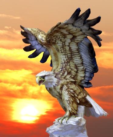 aguila calva: Águila calva listo para volar en la piedra