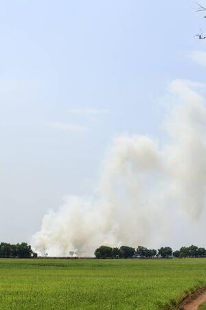 forest fire: Incendios forestales cerca de la caba�a y de la granja