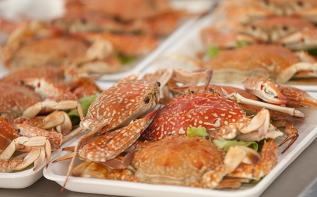 Roasted crab prepared on the white plate  photo