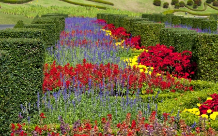 flowerbeds: Flowerbeds, Grass Pathway and Ornamental Vase in a Formal Garden
