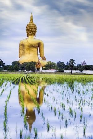 ang thong: A biggest Buddha in Thailand, Ang Thong province