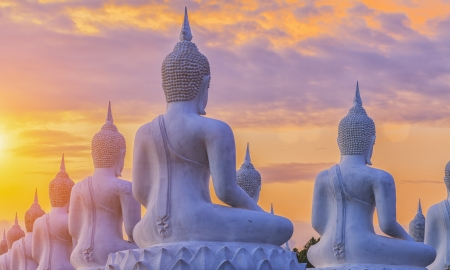 buddha lotus: Many Buddha statue on sunset Stock Photo