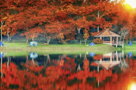 picknic: Landscape of autumn water park and resort with sunrise