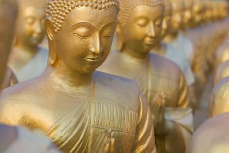 Many Buddha statue selective focus photo