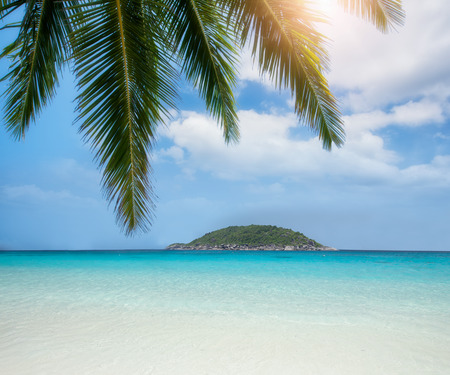 beach landscape: Thailand ocean and beach landscape with coconut and island