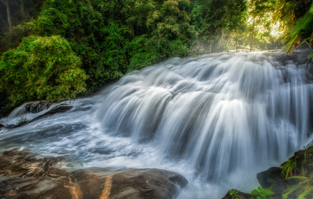 pan tropical:  Waterfall in hill evergreen forest of Doi Inthanon